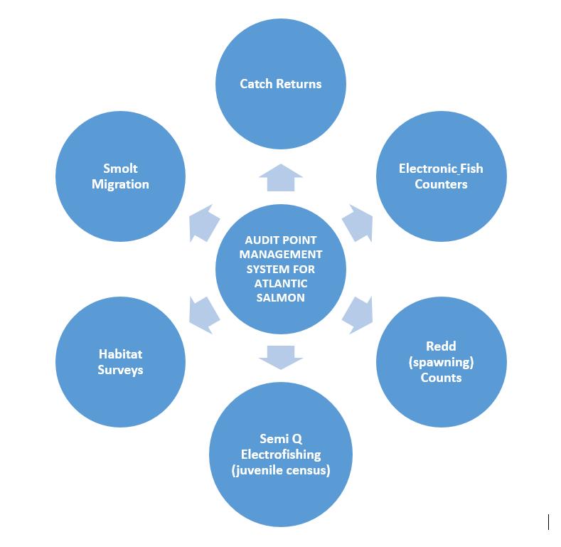 Audit Point Management System for Atlantic Salmon