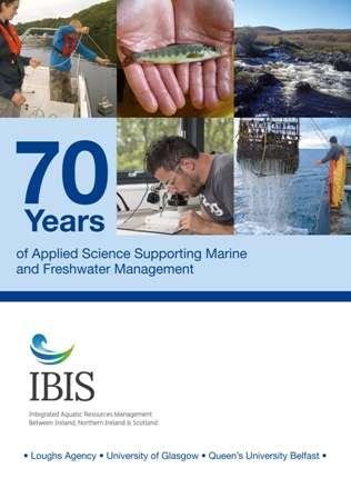 Cover over IBIS book