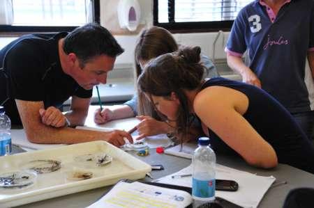 Scientists at knowledge transfer workshop investigation river invertebrates