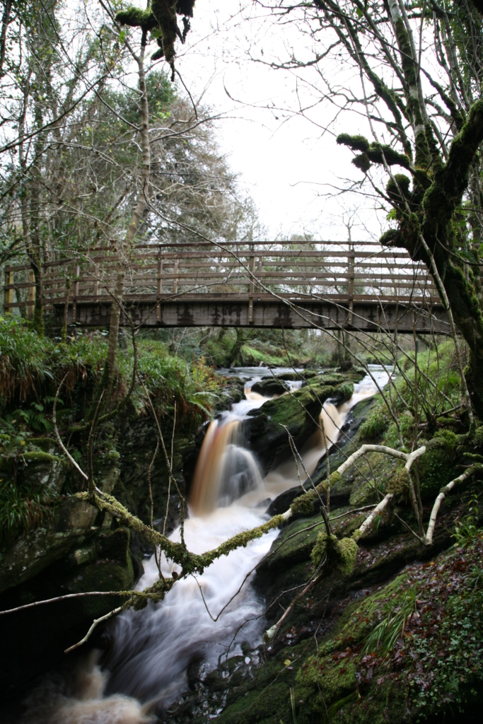 Bridge over flowing waterfall at Ness Woods