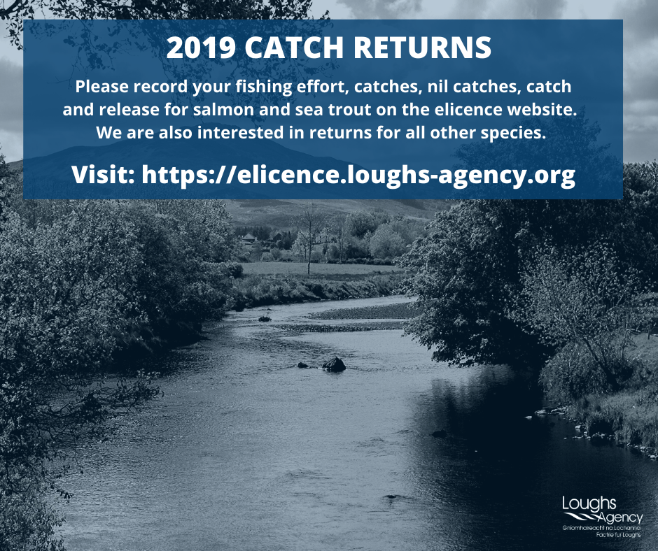 Click this image to open the elicence website to make your catch return
