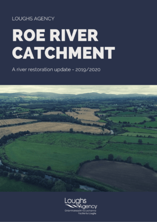 Link to River Roe Case Study